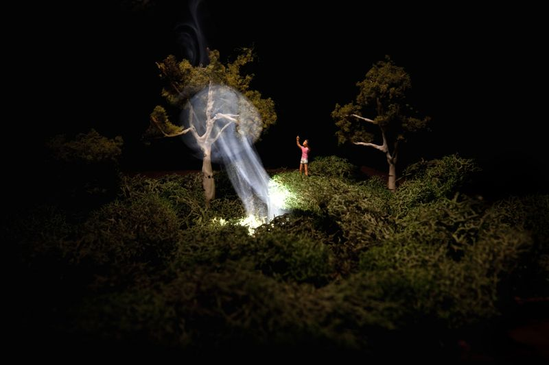 D_Adrien Broom, Untitled, 2011, digital C-type print, framed, 40 x 60 in, courtesy the artist and Ronchini Gallery