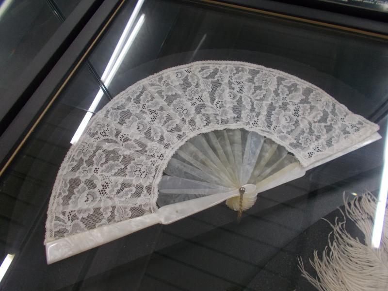 MuseoMalacologia_CupraMarittima_Part2_byAnnaBattista (154)