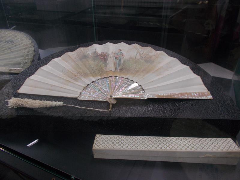 MuseoMalacologia_CupraMarittima_Part2_byAnnaBattista (168)