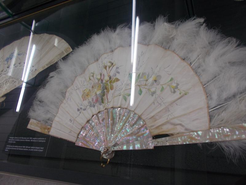 MuseoMalacologia_CupraMarittima_Part2_byAnnaBattista (160)