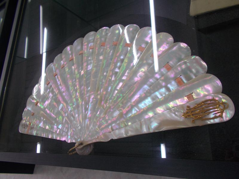 MuseoMalacologia_CupraMarittima_Part2_byAnnaBattista (198)