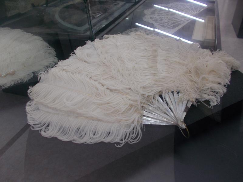 MuseoMalacologia_CupraMarittima_Part2_byAnnaBattista (142)