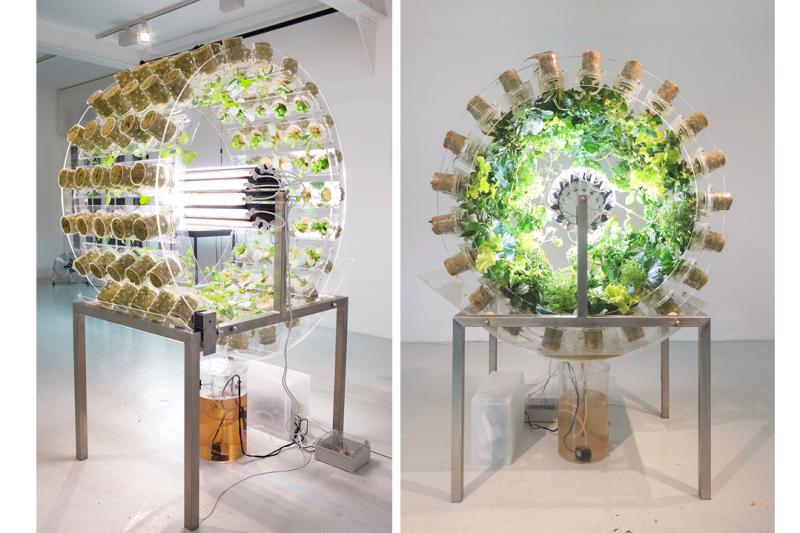 Nick Laessing Plant Orbiter 2017. Ph.  Margot Montigny Galerie PCP Par