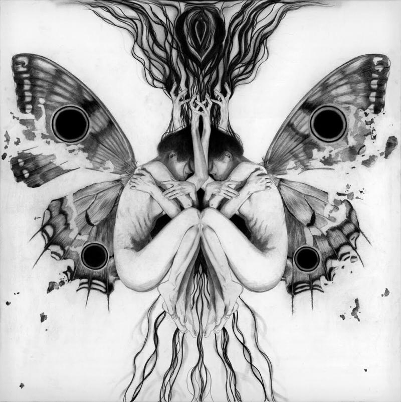 SplitButterfly