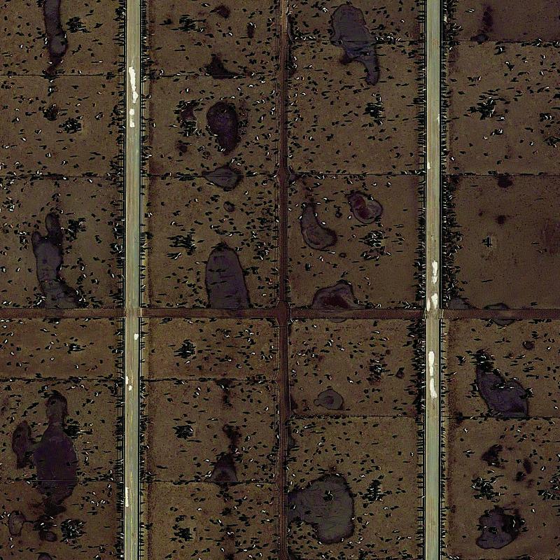30x30_Coronado Feeders Dalhart Texas�km025 copy
