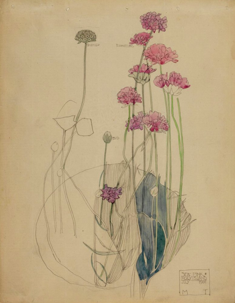 Sea_Pink_-_Holy_Island_-_Charles_Rennie_Mackintosh_-_1901