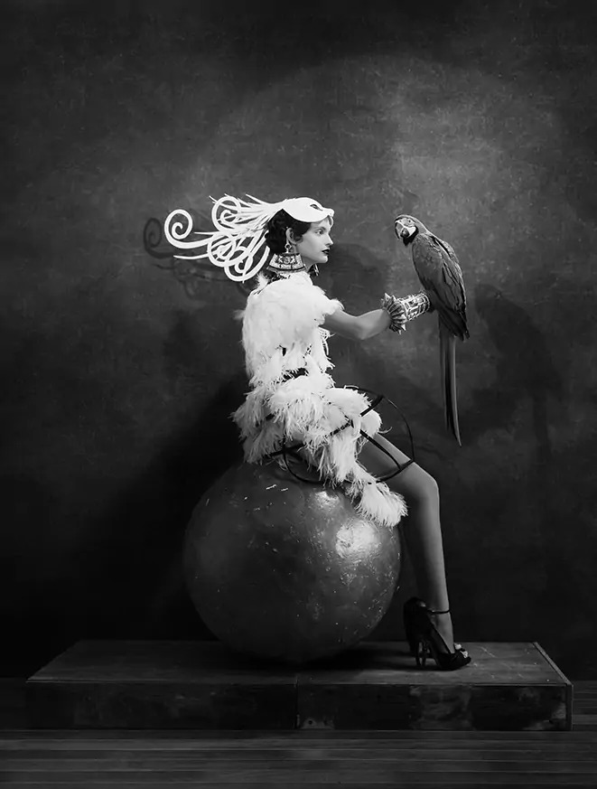 Gastel_parrot